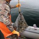 waterfall-resort-alaska-fishing-5