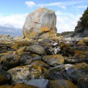 tierra-del-fuego-national-park-7
