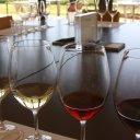 wine-adelaide-hills