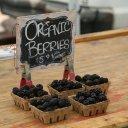 berries-farmers-market-1