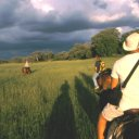 In search of big game in the Okavango on horseback