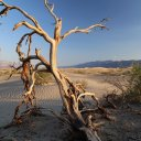 death-valley-national-park-3