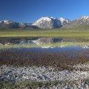 wild-willys-hot-spring-lake