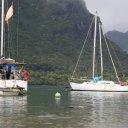 moorea-french-polynesia-tahiti-3