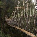 Kumake-National-Rainforest