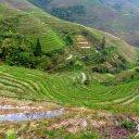 Longji Rice terraces, Guilin