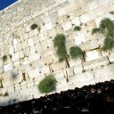 bennett_stevens-israel-wailing-wall_altmen-in-black-at-the-wailing-wall-in-jerusalem