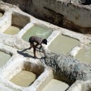 Tannery vats in Fez Morocco