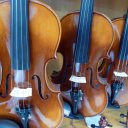 My favorite violin shop in Shanghai