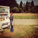 Vending machine, Farm Japan