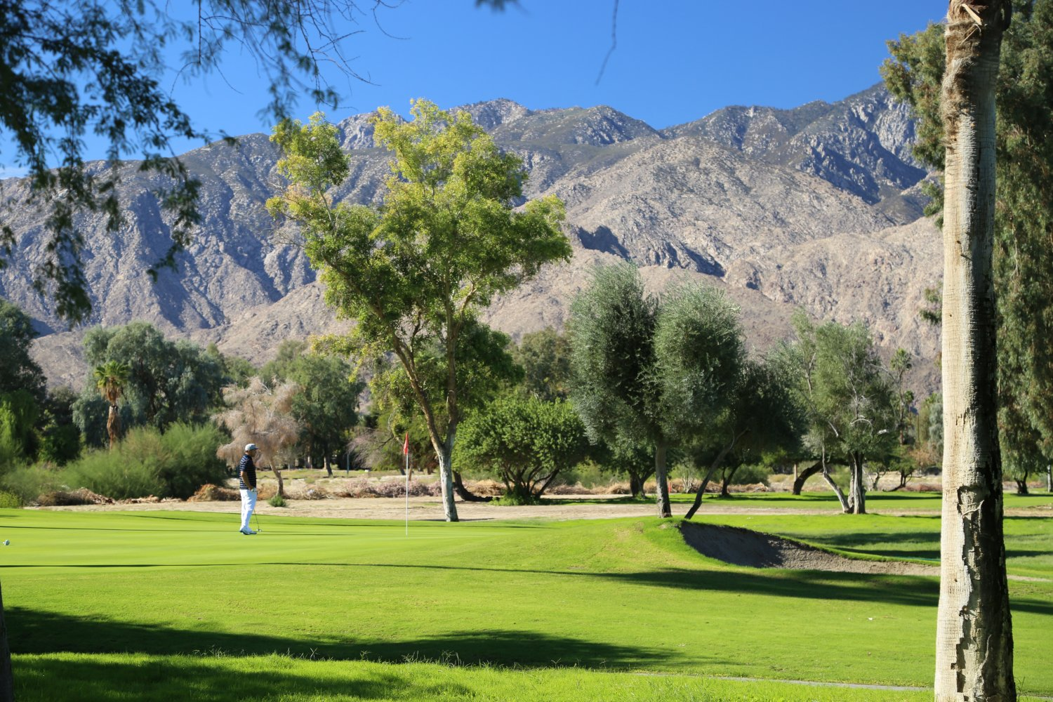 Guides Palm Springs Ca Golf Courses Dave S Travel