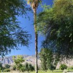 mesquite-golf-course-palm-springs