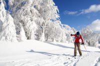 Lake Tahoe, CA – Cross Country Skiing