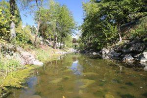 Santa-Rosa-Creek