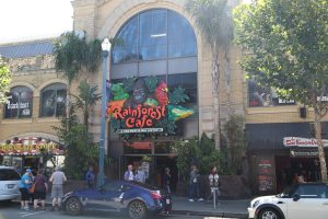 Rainforest-Cafe-San-Francisco