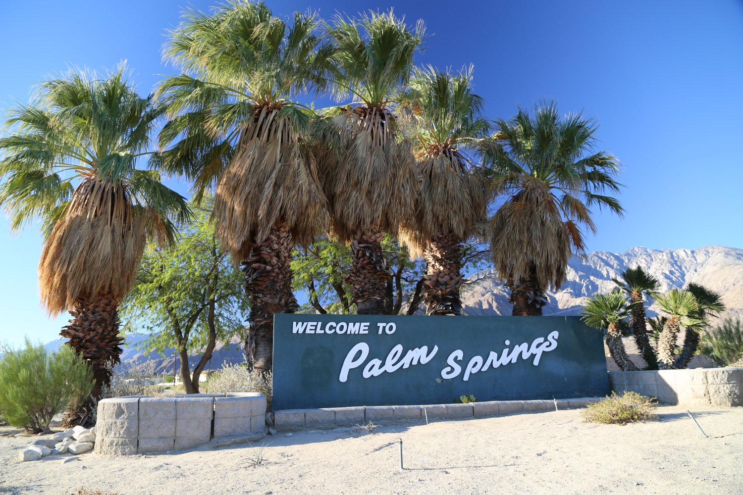 Guides palm springs ca introduction dave 39 s travel for Travel to palm springs