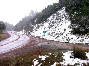 This photo above was taken near the summit of Hopland road, Highway 175 in mid march in the middle of a rare snowstorm!