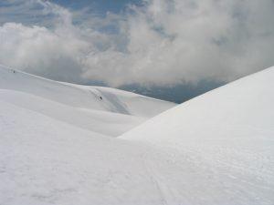 Shasta-Snow