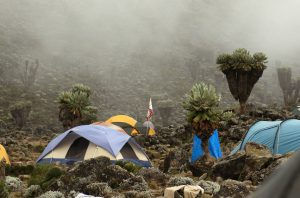 Barranco camp on Machame route. Mount Kilimanjaro, Tanzania.