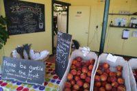 Fisher Fruit Farm, Ripon CA – September 2002