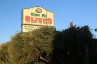 Olive Pit, Corning CA – October 2002