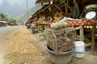 Vang Vieng, Laos – Food