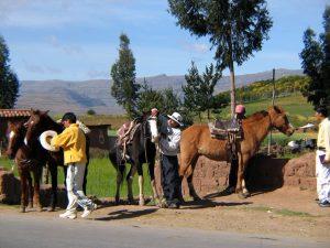 Cuzco-Horseride