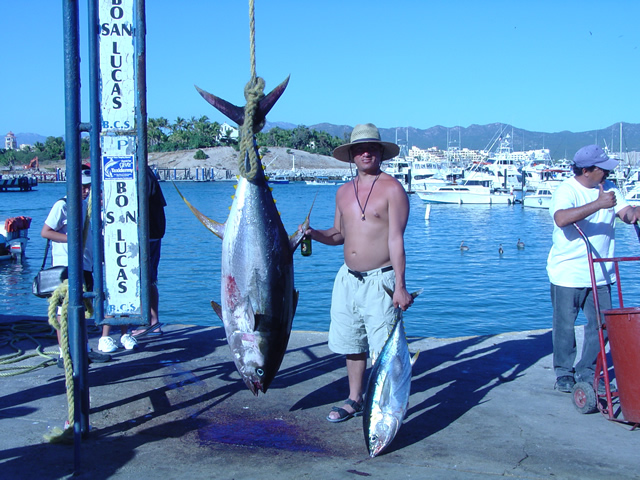 Cabo-San-Luis-Tuna