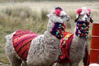 Huaraz, Peru – More Info