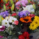 Bellflower-Farmers-Market (2)