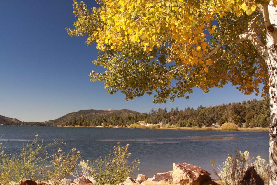 Big-Bear-Lake (2)