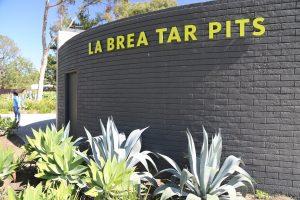 La-Brea-Tarpits