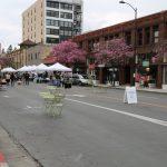 Old-Town-Pasadena-Farmers-Market (2)