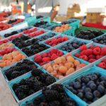 Sherman-Oaks-Farmers-Market (3)