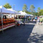 Venice-Farmers-Market-Los-Angeles (1)