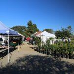 Westchester-Farmers-Market (1)