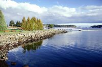 Go Nanaimo, British Columbia