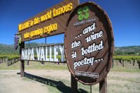 Napa Valley – November 2008