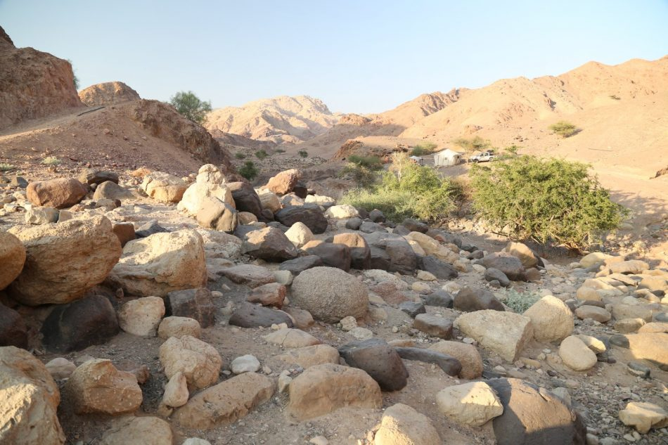 Jordan-Trekking (4)