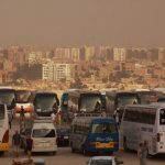 Buses lined up at the Pyramids