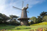 New Iphone App, Golden Gate Park – San Francisco