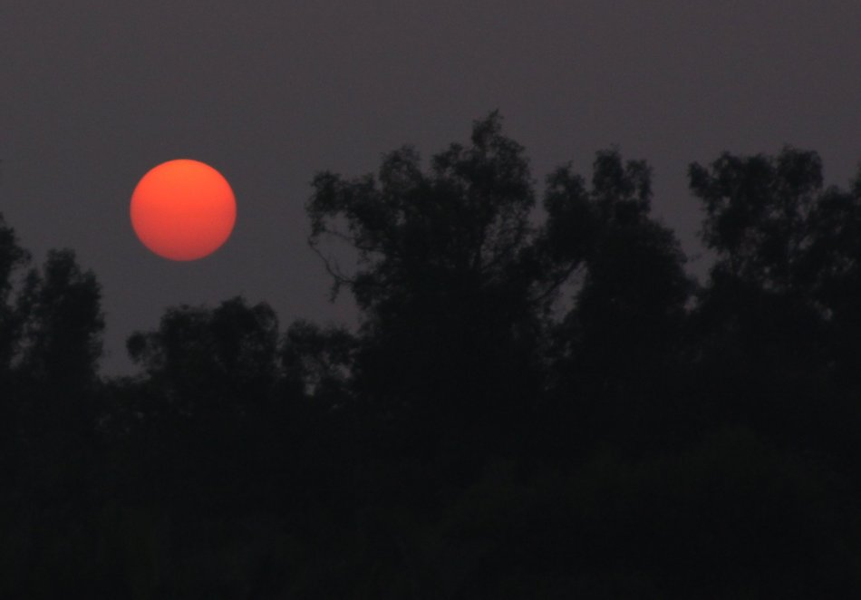 sunset-sundarbans