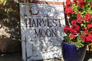 Harvest-Moon-Winery (5)