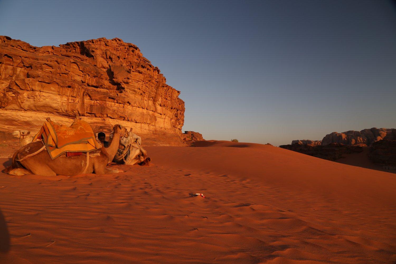wadi-rum (1)