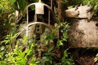 World War II History Tour on Peleliu Island, Palau