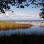 Baltic-Sea-Sweden