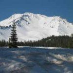 Snowy-Shasta