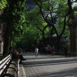 Central-Park-Walkway