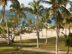 abaco beach resort, room view