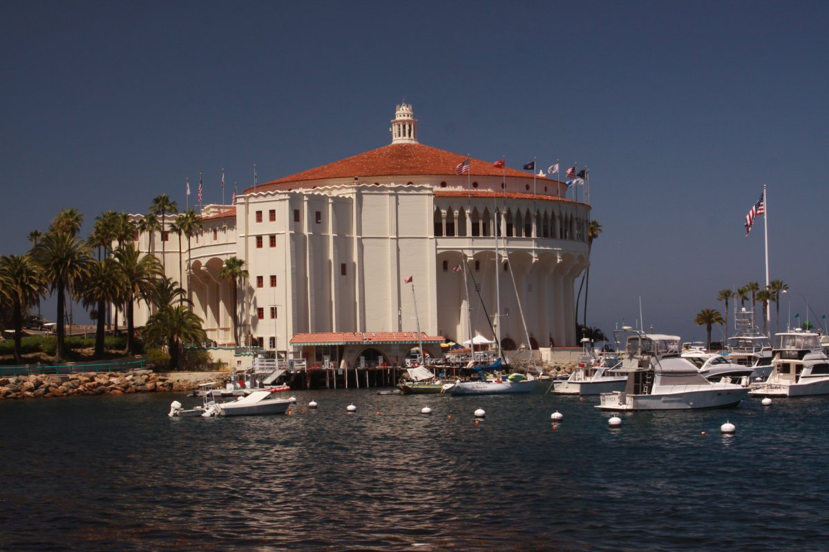 a83a58fe Breathing in the Beauty of Santa Catalina Island - Dave's Travel Corner
